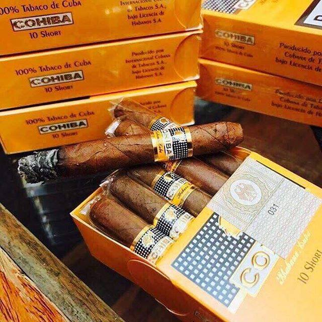 Cigar Cohiba Short Mini