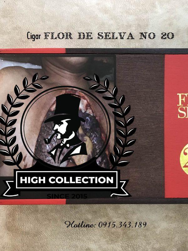 Cigar Non Cuba Flor de Selva No 20