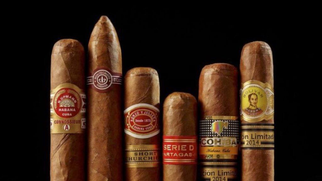 tiêu chí chọn mua xì gà